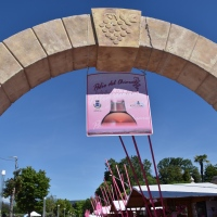 Bardolino 2019,Weinfest und Pink