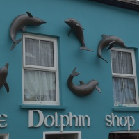 Dingle, Dolphin Shop