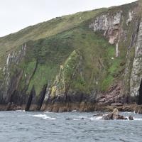 Irische Klippen